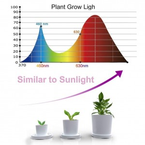 Greensen led grow light for indoor plants, Two-Way Timer Auto ON & Off Every Day Plant Grow Lamp 24W 36 LED 3/9/12H Timer 5 Dimmable Levels Adjustable Gooseneck for Seedling Growing Blooming Fruiting
